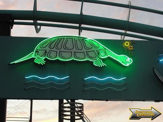turtle3s